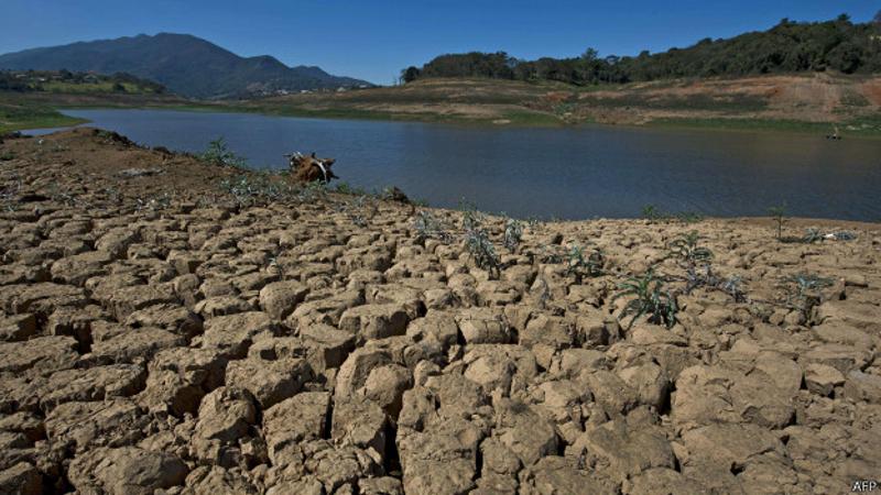 Reflorestar represas aumenta reserva de água em 50%, diz ONG