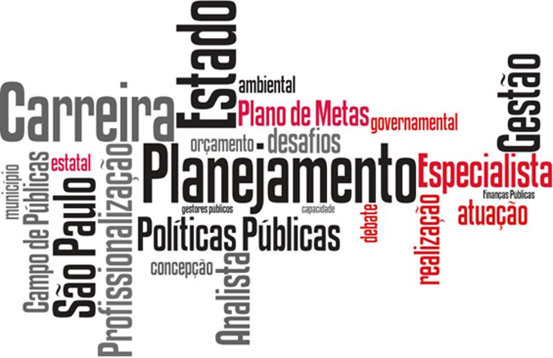 Debate: o papel dos gestores públicos de carreira no aumento da capacidade de planejamento e realização do Estado