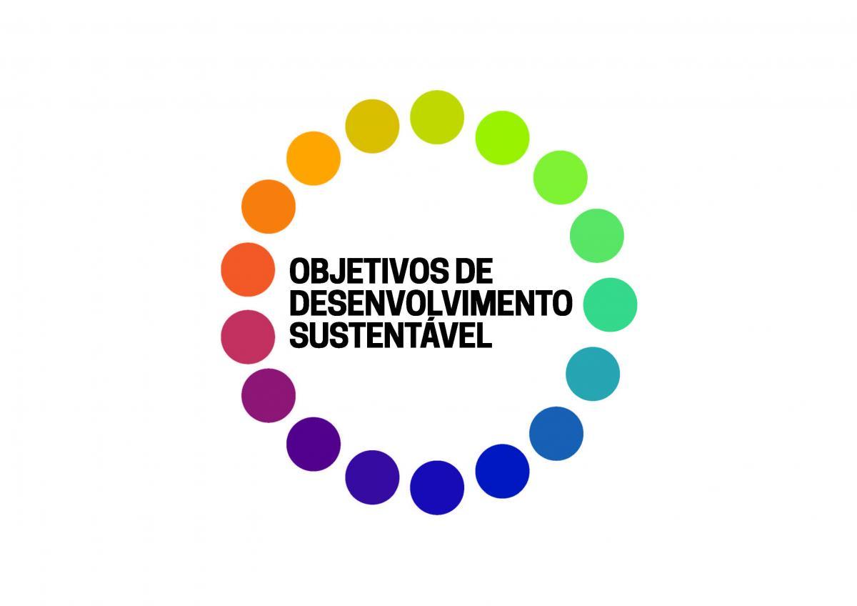 Nossa São Paulo participa de evento na ONU para o lançamento dos ODS