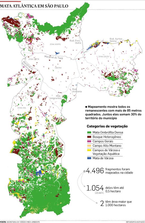 Mapa mostra que 30% da área de São Paulo é de Mata Atlântica