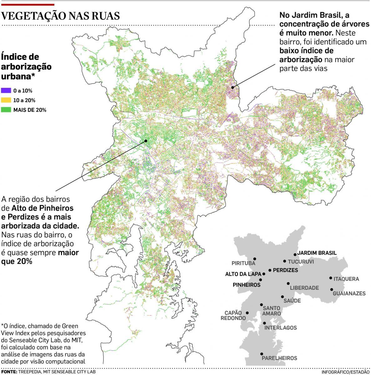 Em SP, árvores ocupam apenas 11,7% das ruas; bairros expõem contrastes